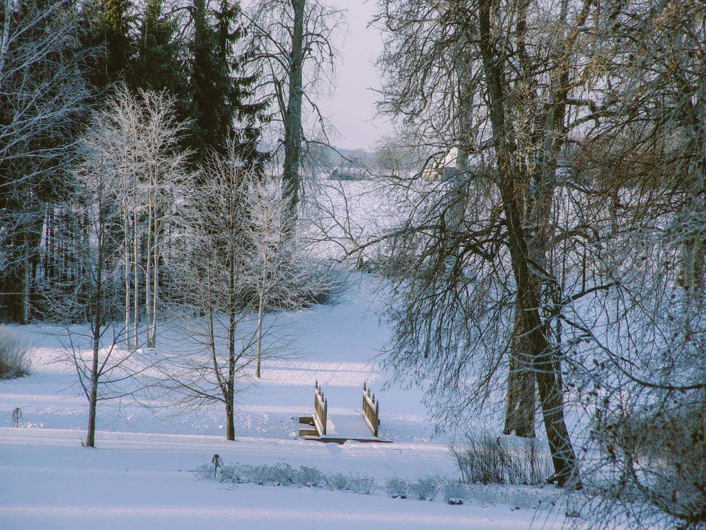 Narvydiškio dvaras žiemą